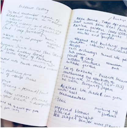 Hannah_Notebook