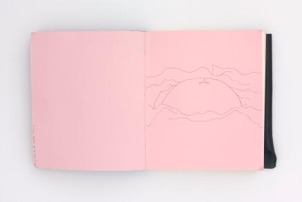 LargerBook-003