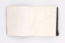LargerBook-008